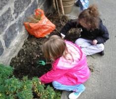 planting4